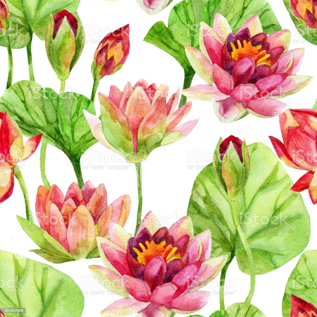 Lotus Flower Pattern Watercolor Stock Vector Art & More Images of ...
