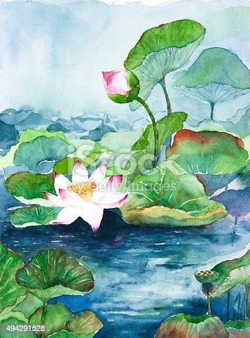 lotus flower watercolor on paper