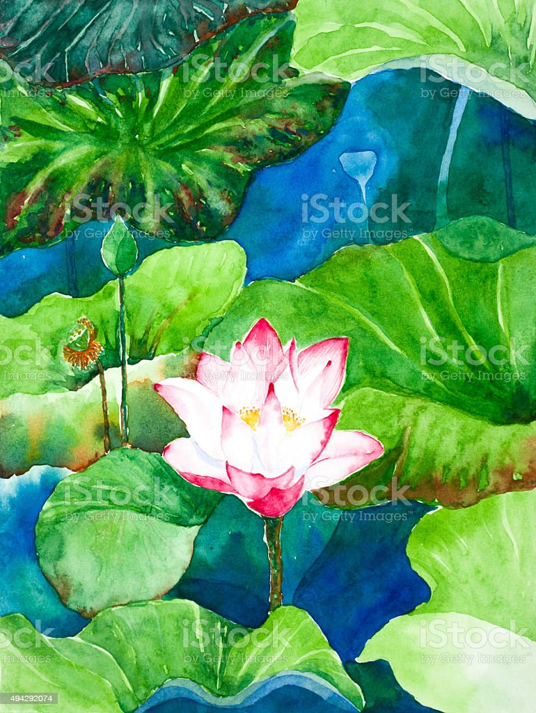 Lotus flower watercolor painted stock vector art 494292074 istock lotus flower watercolor painted royalty free stock vector art izmirmasajfo