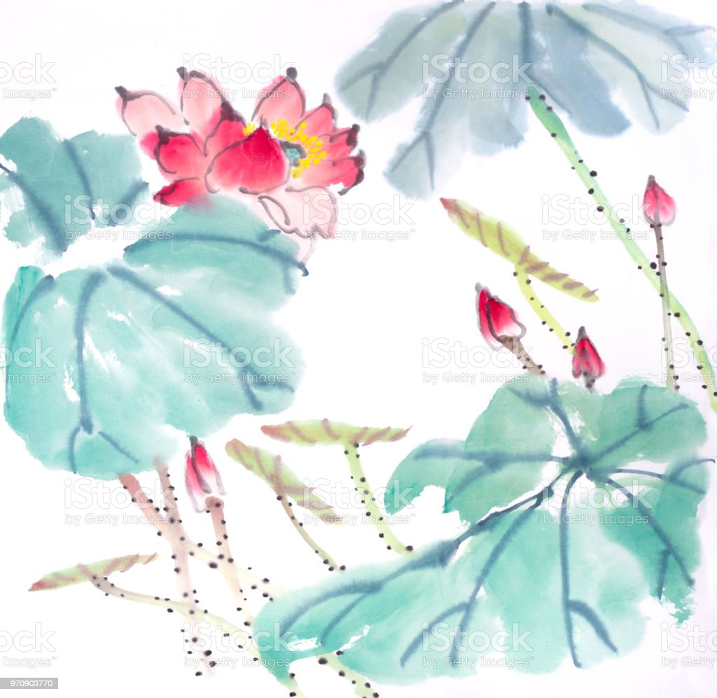 Lotus Flowers Hand Drawn With Inkchinese Watercolor Painting Stock