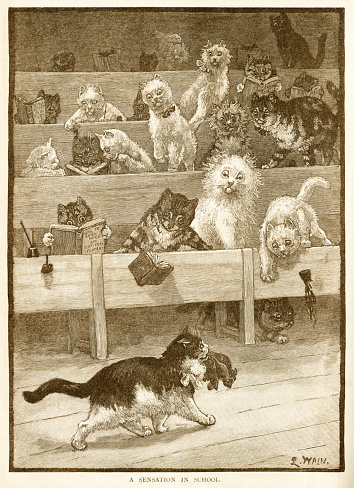 """An engraving by Louis Wain of humorous cats at their school desks, scandalised by the appearance of another cat carrying a mouthful of dead mice. From """"Little Folks: A Magazine for the Young"""", published by Cassell & Company Limited, London, published in 1887."""