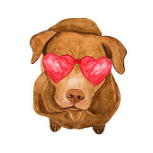 istock Lovable, pretty beige puppy. Beautiful drawing. Close-up 1292375435
