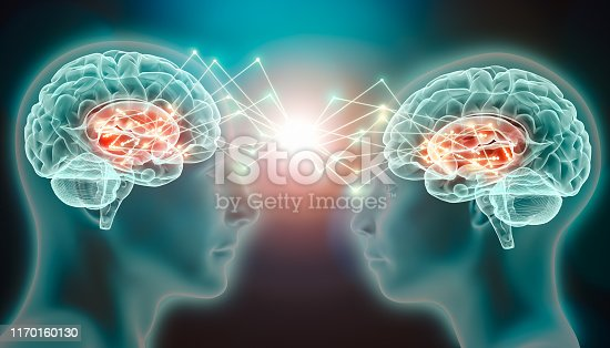 Love emotion or empathy cerebral or brain activity in caudate nucleus. Connection between two people. Conceptual 3d illustration of love, attraction or lure neurological stimulation or telepathy.