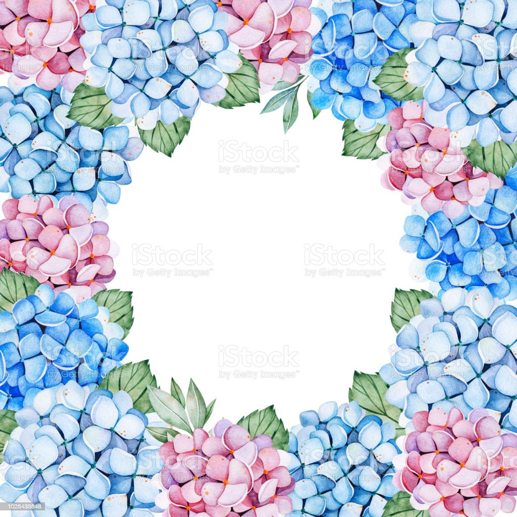 Lovely Frame Border With Blue And Purple Hydrangea Flowers And