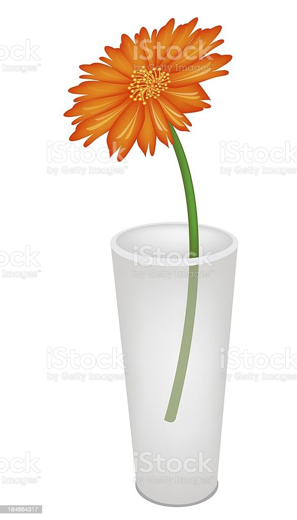 Lovely Fresh Daisy Flower In Glass Vase Stock Vector Art 184664317