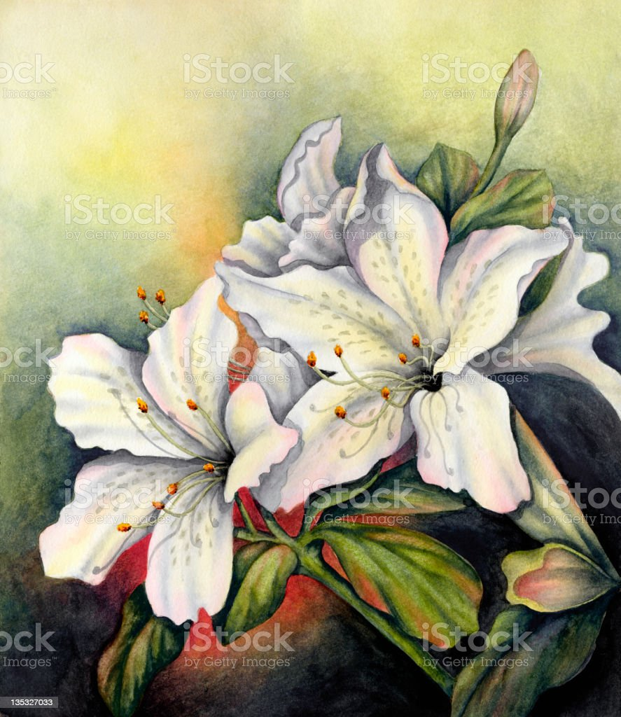 Lovely Lilies royalty-free stock vector art