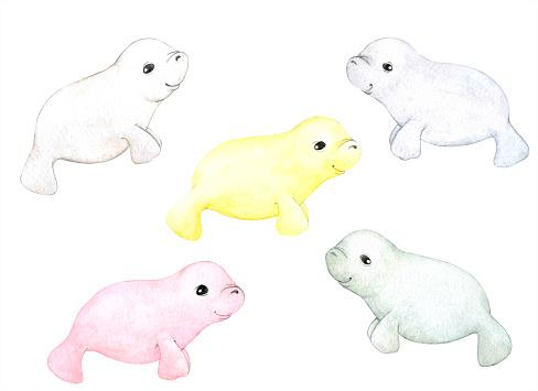 Lovely manatees. Children's illustration.