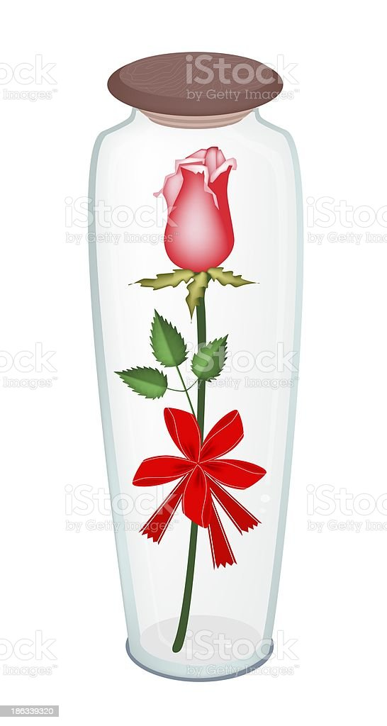Lovely  Rose with Red Ribbon in Glass Bottle royalty-free stock vector art