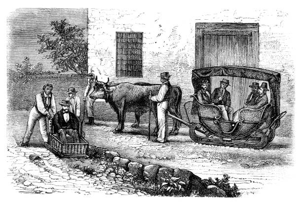ilustrações de stock, clip art, desenhos animados e ícones de madeira toboggan riders use basket sledges to drive from monte to funchal - funchal madeira