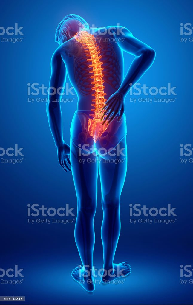 Male Feeling The Back Pain Stock Illustration - Download..