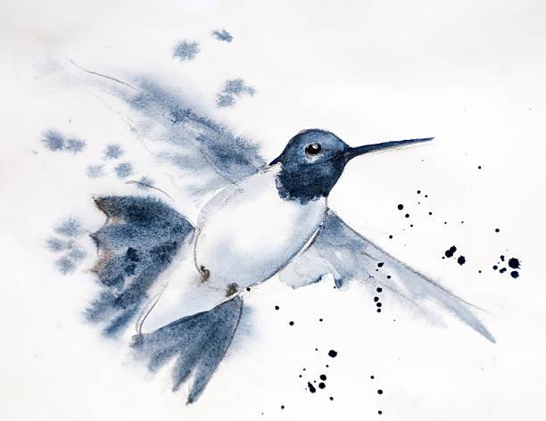 Male Hummingbird in Flight vector art illustration