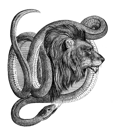 Male Lion with snake around head Original edition from my own archives Source : Gartenlaube 1861 Drawing : Guido Hammer