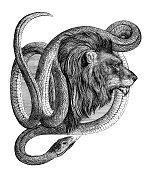 istock Male Lion with snake around head illustration 1861 1280223154