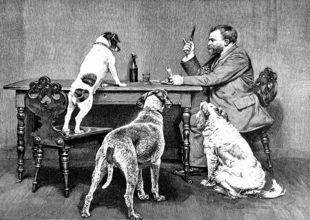 man and three dogs at the dining table - old man standing drawings stock illustrations, clip art, cartoons, & icons