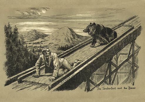 Vintage engraving of Man chased by a bear down a wooden shoot, Victorian, 19th Century.  The Tenderfoot and the bear, A lightning toboggan ride by Wilf Pocklington