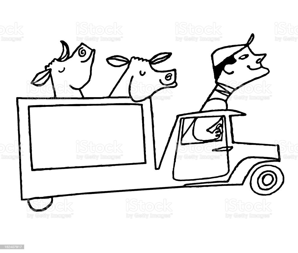 Man Driving Cows in Truck royalty-free man driving cows in truck stock vector art & more images of adult