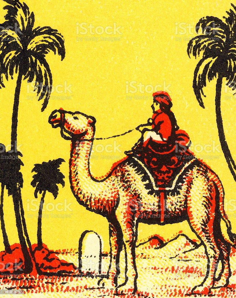 Man Riding a Camel royalty-free man riding a camel stock vector art & more images of animal