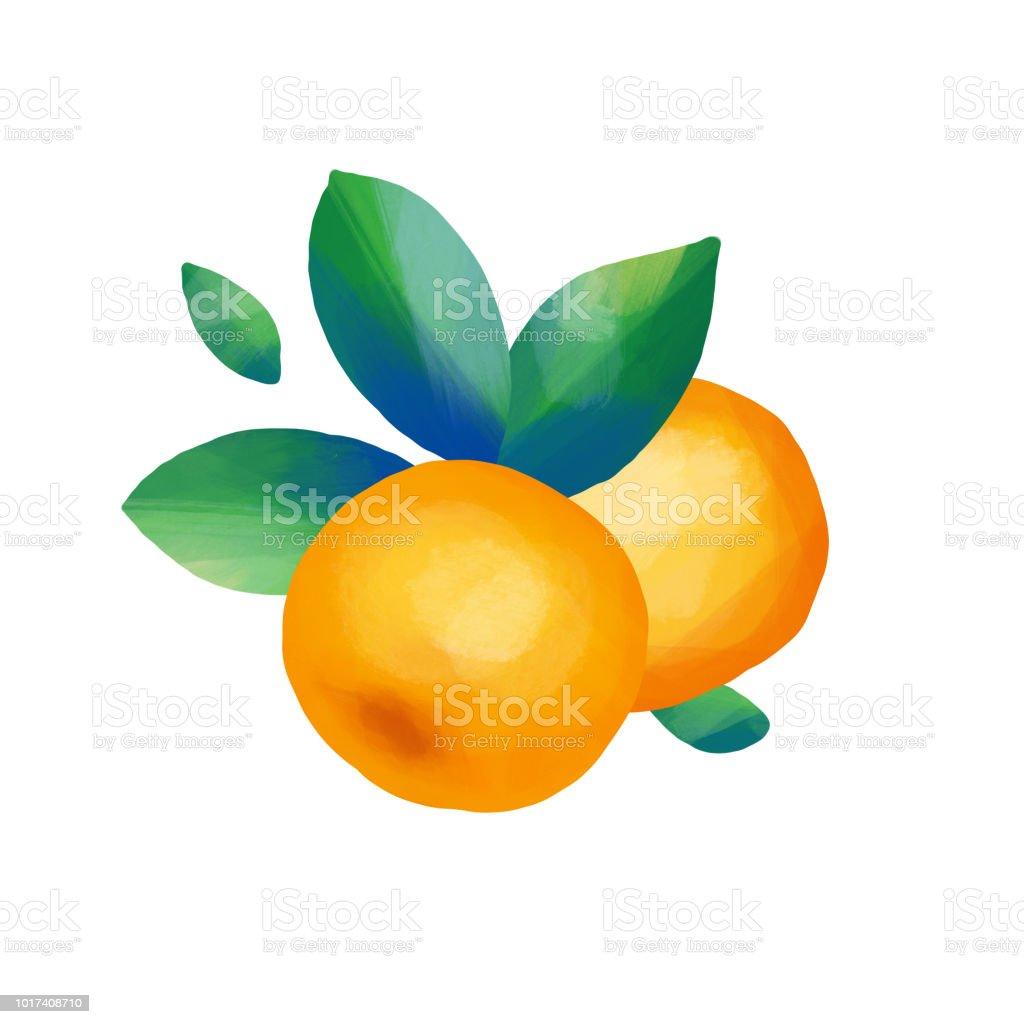 Mandalina Meyve Ve Yapraklari Stok Vektor Sanati Akrilik Boyama
