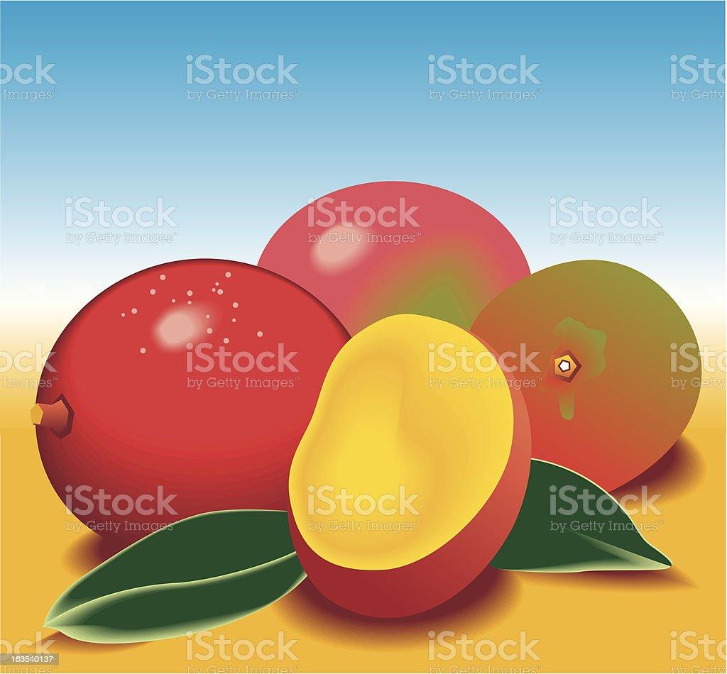 Mango royalty-free stock vector art