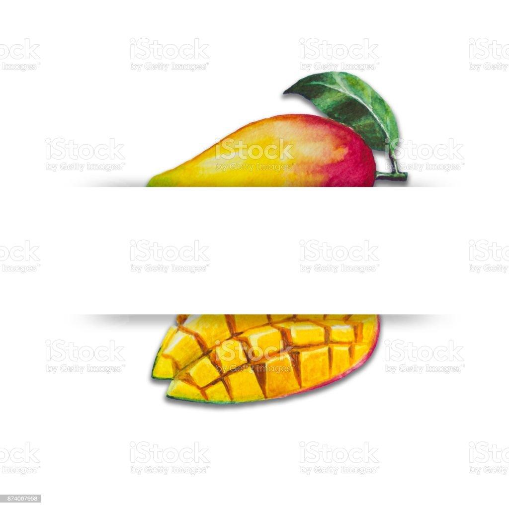 Suluboya Ile Mango Boyama O Zaman Beyaz Bir Arka Plan üzerine
