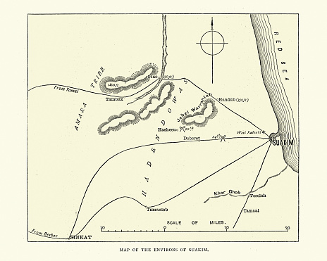 Vintage illustration of Map of the environs of Suakin, Sudan, 19th Century