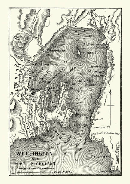 ilustrações de stock, clip art, desenhos animados e ícones de map of wellington and port nicholson, new zealand, 19th century - wellington