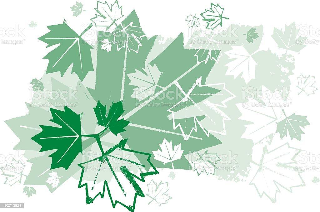 Maple Leaf Design royalty-free stock vector art