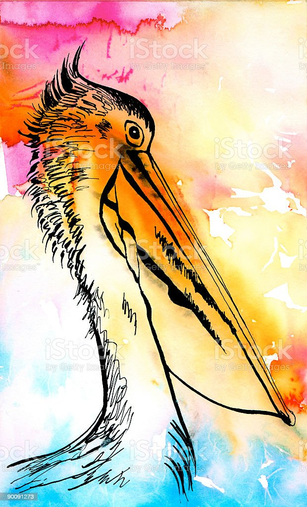 Marabou (WaterColour Illustration) vector art illustration