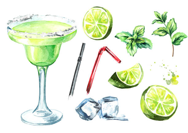 Margarita cocktail with decor elements lime, mint and ice cubes. Watercolor hand drawn illustration, isolated on white background Margarita cocktail with decor elements lime, mint and ice cubes. Watercolor hand drawn illustration, isolated on white background margarita stock illustrations