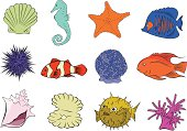 Marine Life 1