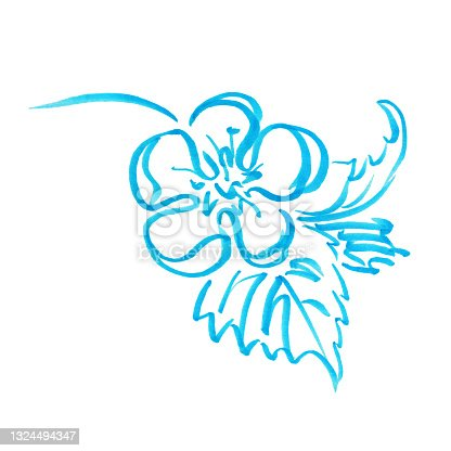 istock Marker bright blue flower with leaves hand drawn line stroke strawberries 1324494347