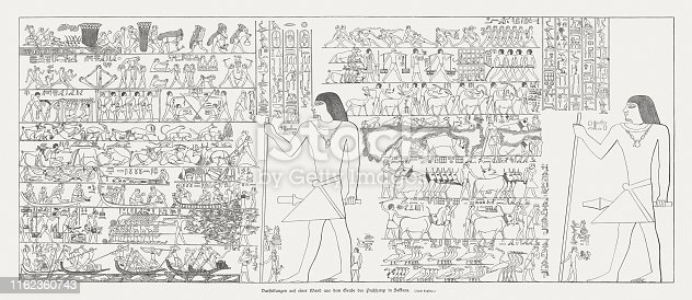 Wall decoration from the Mastaba of Ptahhotep at Saqqara, Egypt. Ptahhotep was an ancient Egyptian vizier during the late 25th century BC and early 24th century BC, 5th Dynasty of Egypt. Wood engraving after an ancient painted stone relief, published in 1879.