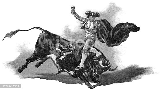 A matador leaping over a bull at a bullfight in Madrid, Spain. Vintage halftone etching circa 19th century.