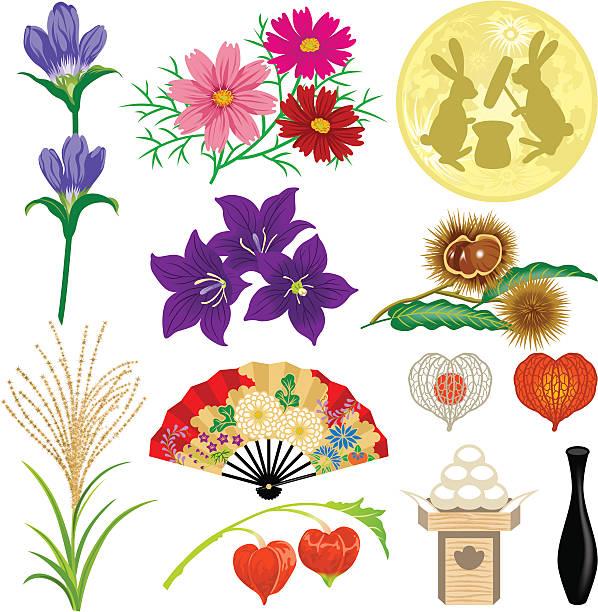 illustrazioni stock, clip art, cartoni animati e icone di tendenza di materiali di giapponese luna dell'equinozio immagine - miscanthus sinensis