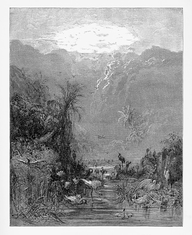 Meanwhile the tepid caves and fens and shores Victorian Engraving, 1885