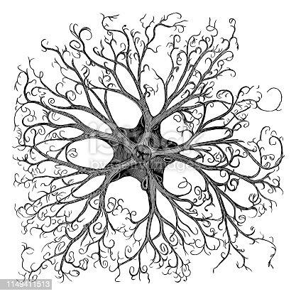 Illustration of a Medusa's head