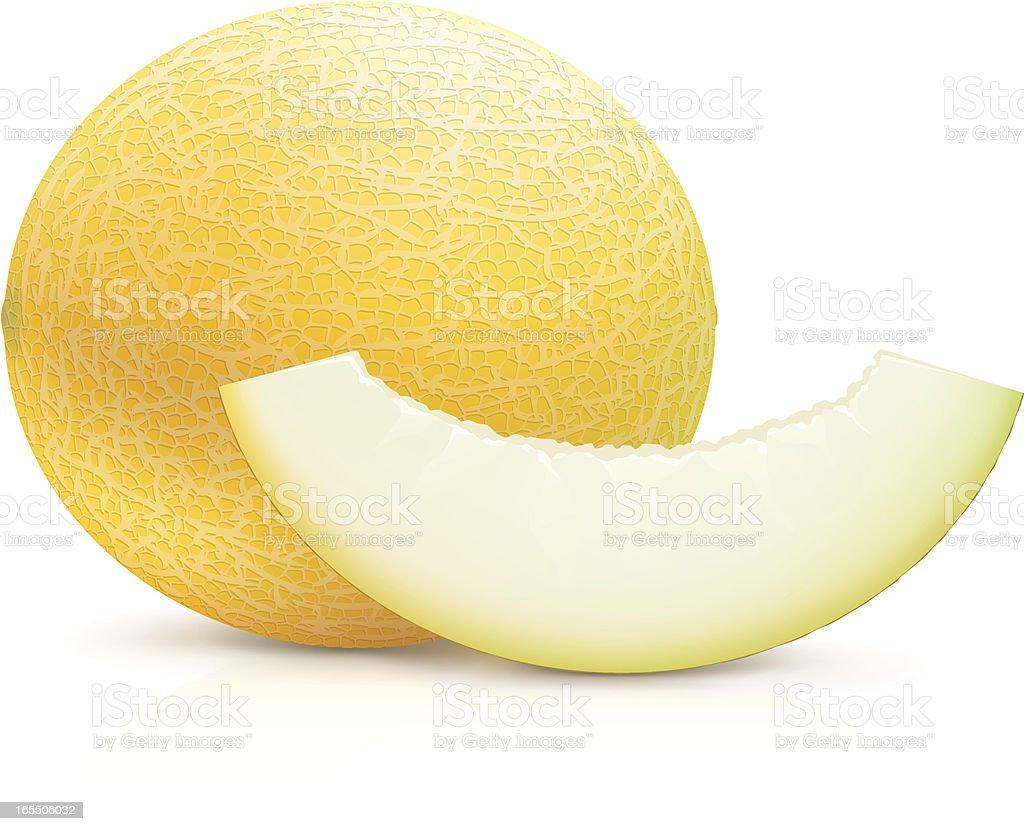 Melon royalty-free melon stock vector art & more images of cantaloupe