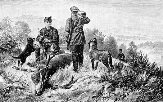 Men hunting deer in nature 1890
