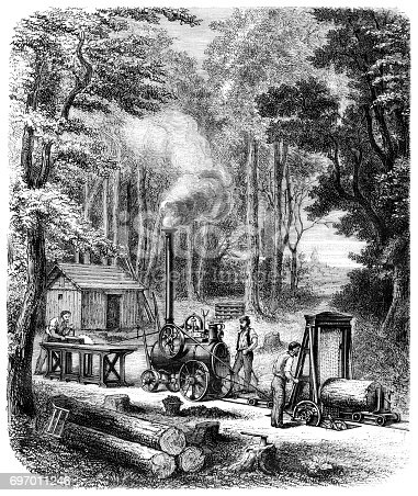 Steel engraving men lumberjack working in the forest