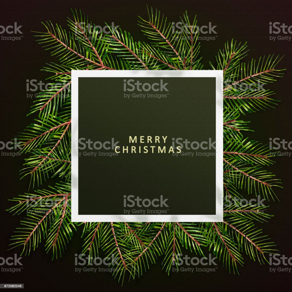 Merry Christmas Greeting Phrase Christmas Text On Pine Tree Branches
