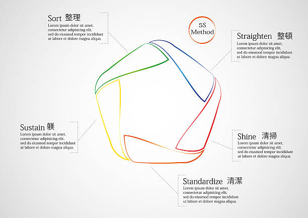 5S method infographic consists of lines vector art illustration