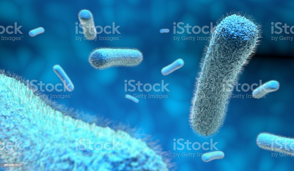 microscopic bacteria in blue background vector art illustration