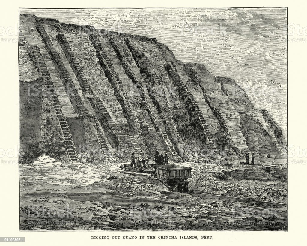 Mining Guano, Chincha Islands, Peru, 19th Century vector art illustration