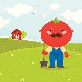 Mister Tomato