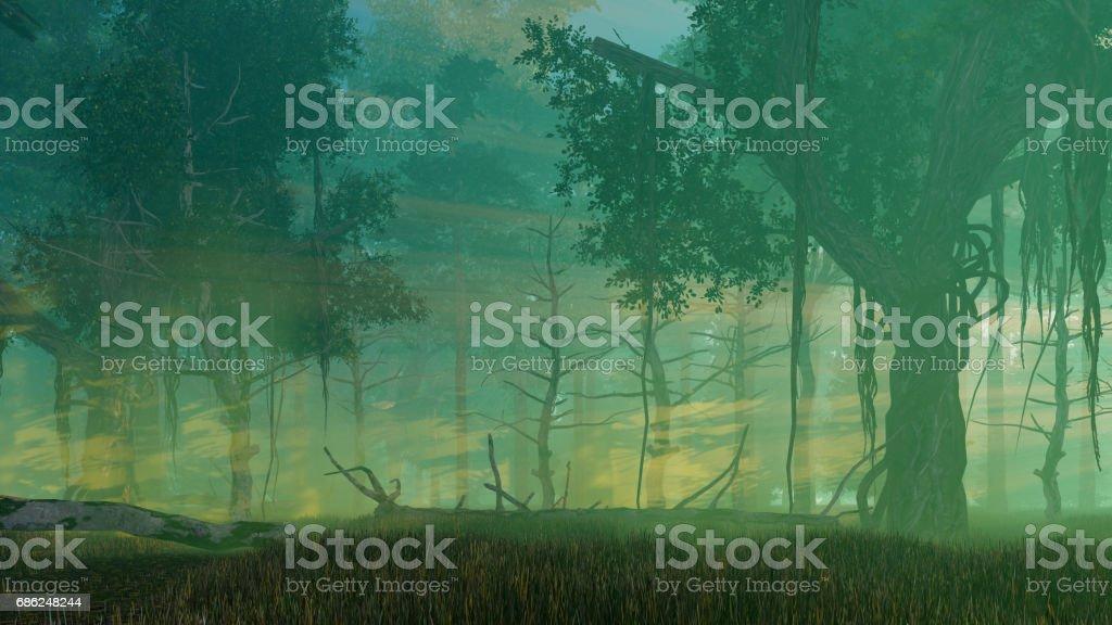 Misty dusk in dark mysterious forest ベクターアートイラスト