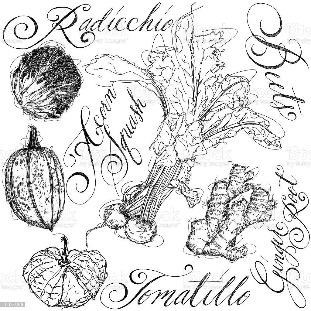 Mixed Vegetables vector art illustration