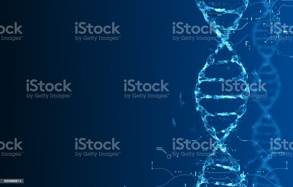 Molecules of DNA vector art illustration