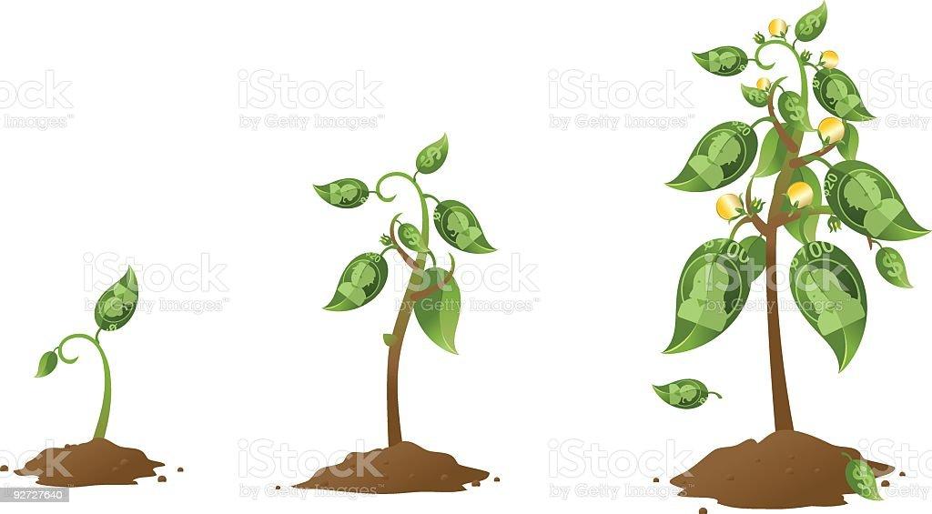 Money tree growing vector art illustration