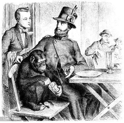 Illustration of a Monkey in a restaurant