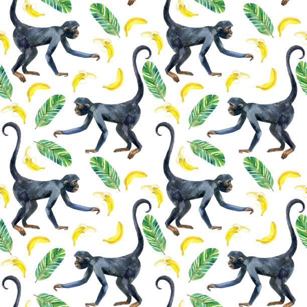 Patrón sin costuras de monos. - ilustración de arte vectorial